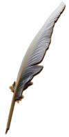 Plume utilis� comme un stylo