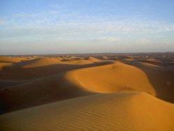 Dune dans le désert