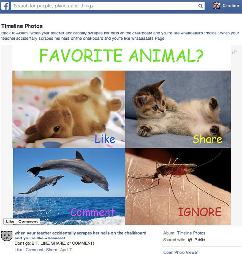 Exemple de stratégie de likebaiting sur Facebook